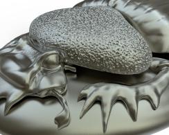 Close up of Zbrush model